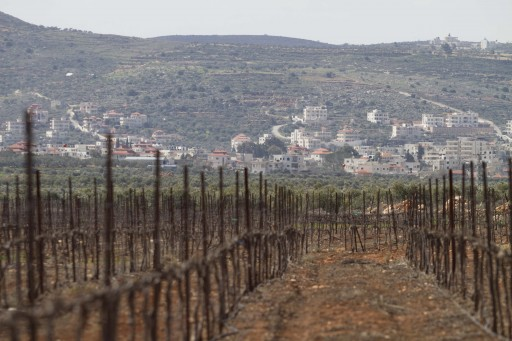 In this photo taken Tuesday, Feb. 28, 2012, a vineyard in Jewish West Bank settlement of Shilo, near Nablus. Israel has quietly legalized one of the oldest and largest of the unsanctioned settler enclaves dotting the West Bank, a step denounced by Palestinians and Israeli settlement monitors as a particularly egregious show of bad faith ahead of the Israel's prime minister's White House talks with U.S. President Barack Obama. (AP Photo/Dan Balilty)