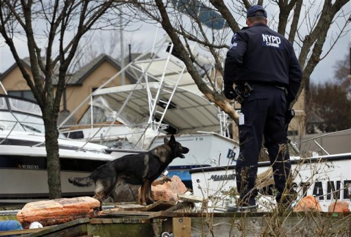 FILE - New York City Police Emergency Service K9 Unit officer Dennis Coughlin (R) and his partner search dog Brutas search for possible victims bodies amid boats and debris washed ashore by Hurricane Sandy on the south side of the Staten Island section of New York City, November 1, 2012. Reuters