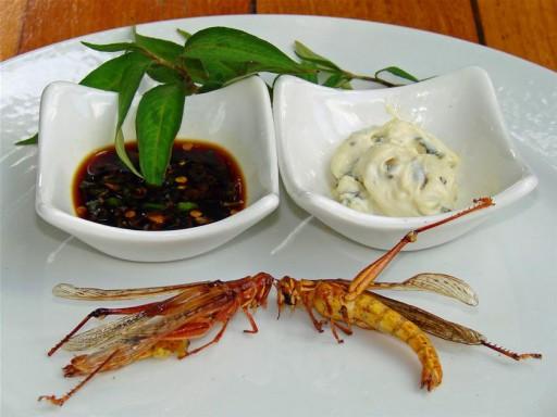 locust deep fried