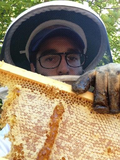 Chasidic beekeeper Uri Laio
