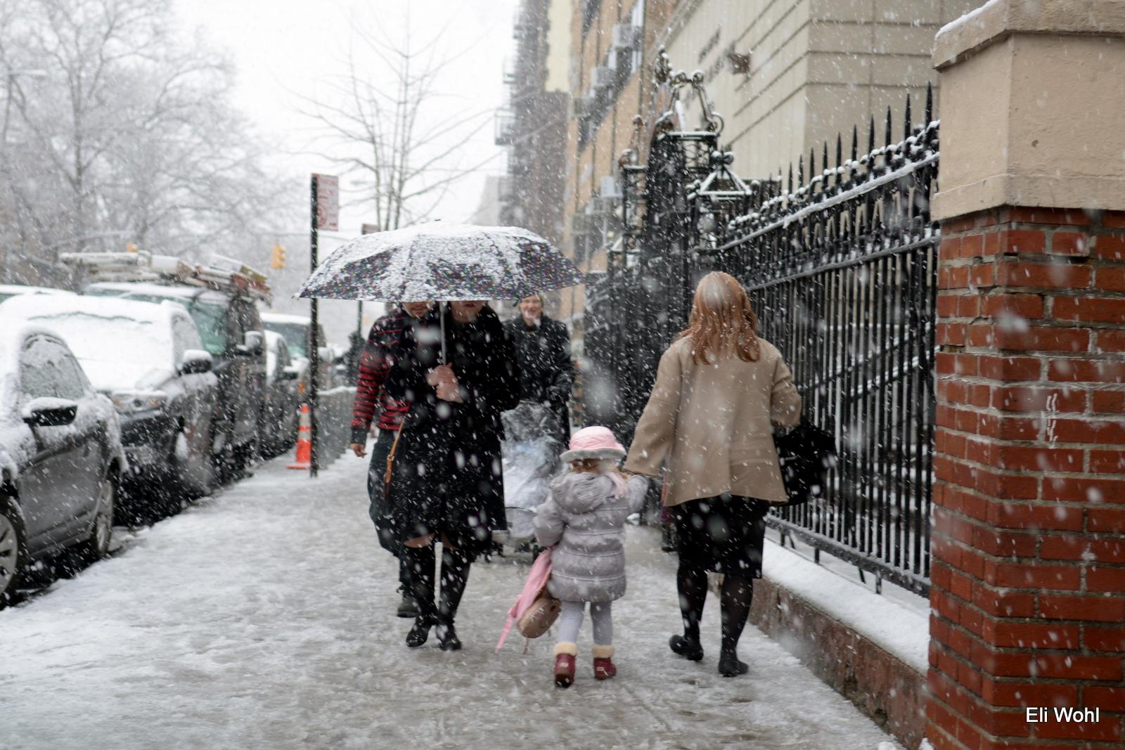 USA: new york weather