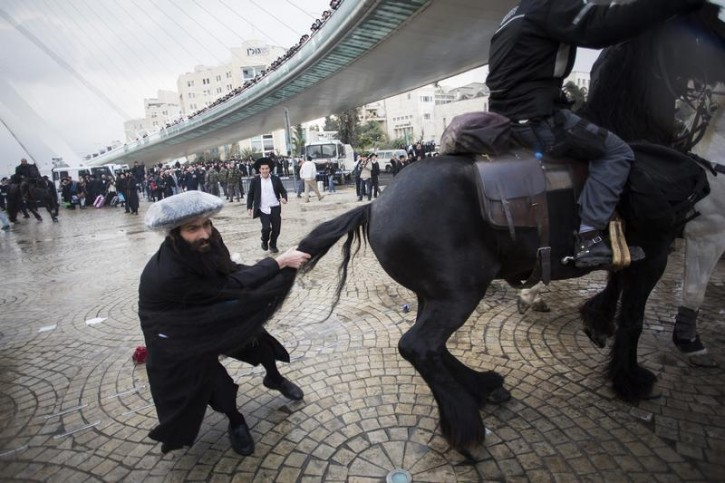 An ultra-Orthodox Jewish protester pulls the tail of a horse used by policemen to disperse protesters during a demonstration in Jerusalem February 6, 2014. Hundreds of ultra-Orthodox Jews in Israel blocked highways and clashed with police on Thursday in protest at a government decision to cut funds to seminary students who avoid military service. REUTERS/Baz Ratner