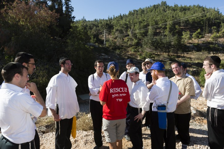 Police and Border Patrol officers together with voluneers continue the search for missing Yeshiva student, Aharon Sofer, around the Jerusalem Forest, on August 26, 2014. Sofer has been missing since Friday, August 22. Photo by Flash 90