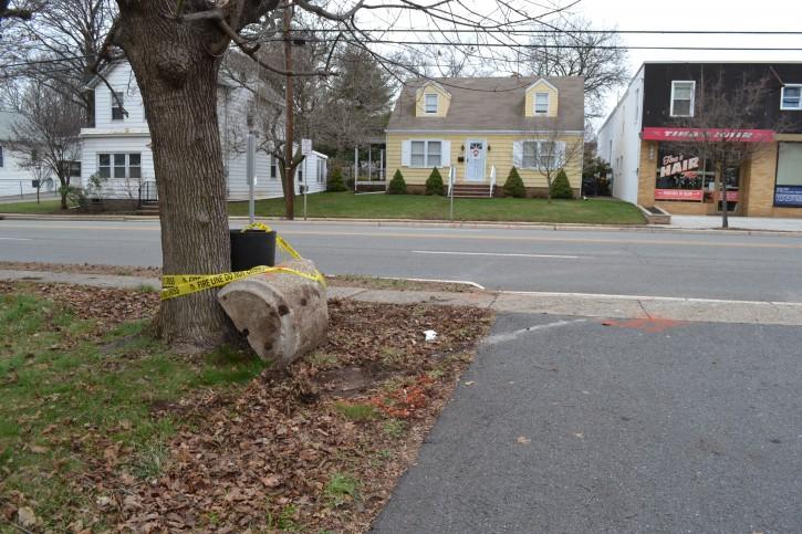Highland Park Car Accident