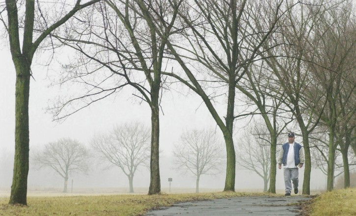 FILE - In this March 5, 2004 file photo, a man walks along a path lined with elm trees in Princeton, N.J.. The recent spring-like weather has a big downside for allergy sufferers: Tree buds, the first being elms and maples, have begun releasing pollen ahead of the normal time. (AP Photo/Daniel Hulshizer, File)