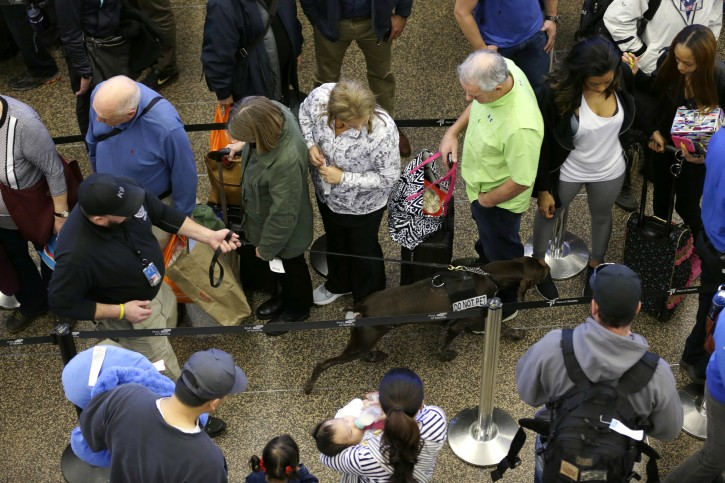 FILE - In this March 17, 2016, file photo, a K-9 handler with the Transportation Security Administration walks his dog through lines of travelers approaching a security screening checkpoint at Seattle-Tacoma International Airport in Seattle.  (AP Photo/Ted S. Warren, File)