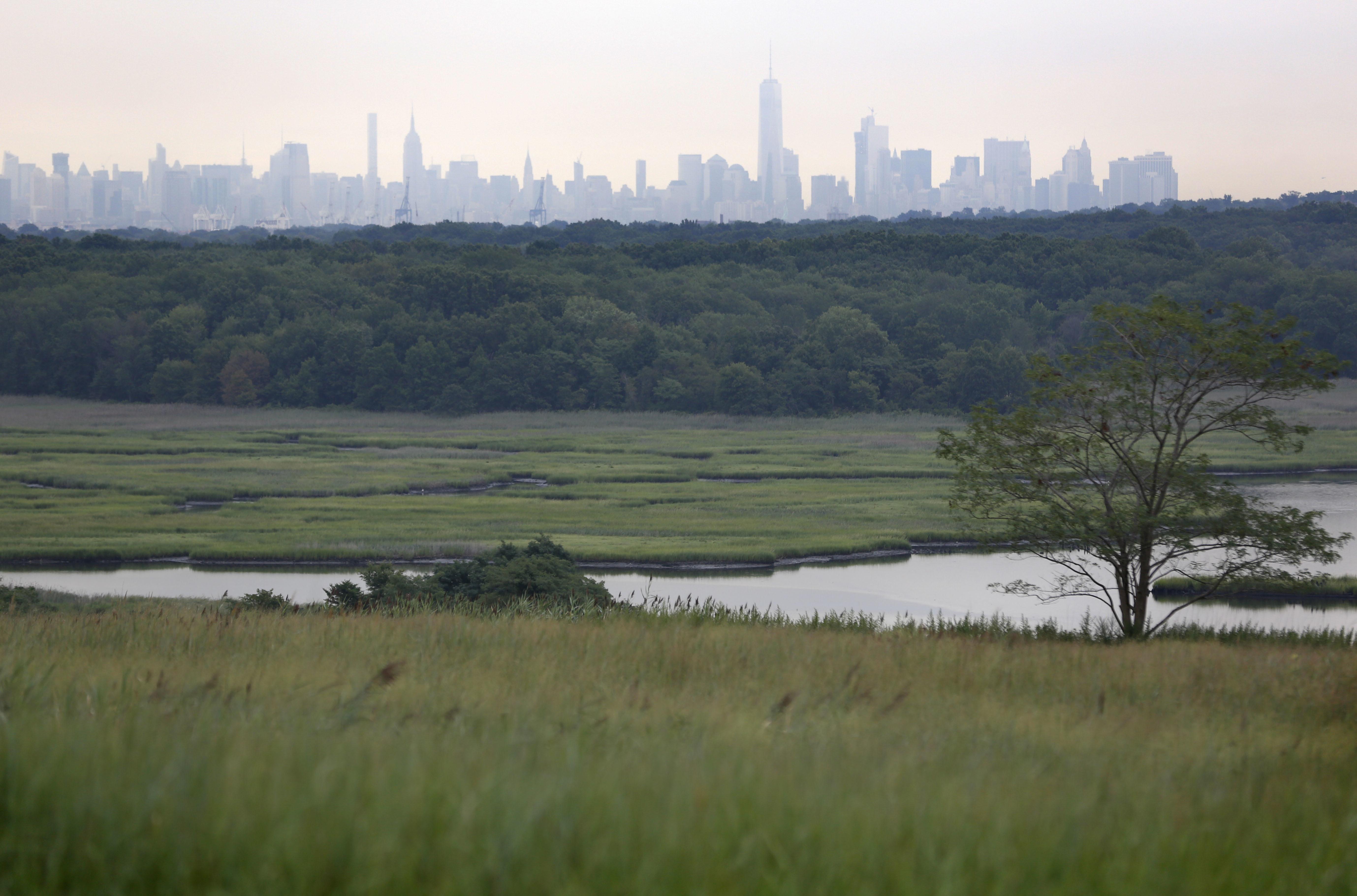 Staten Island Dump Park