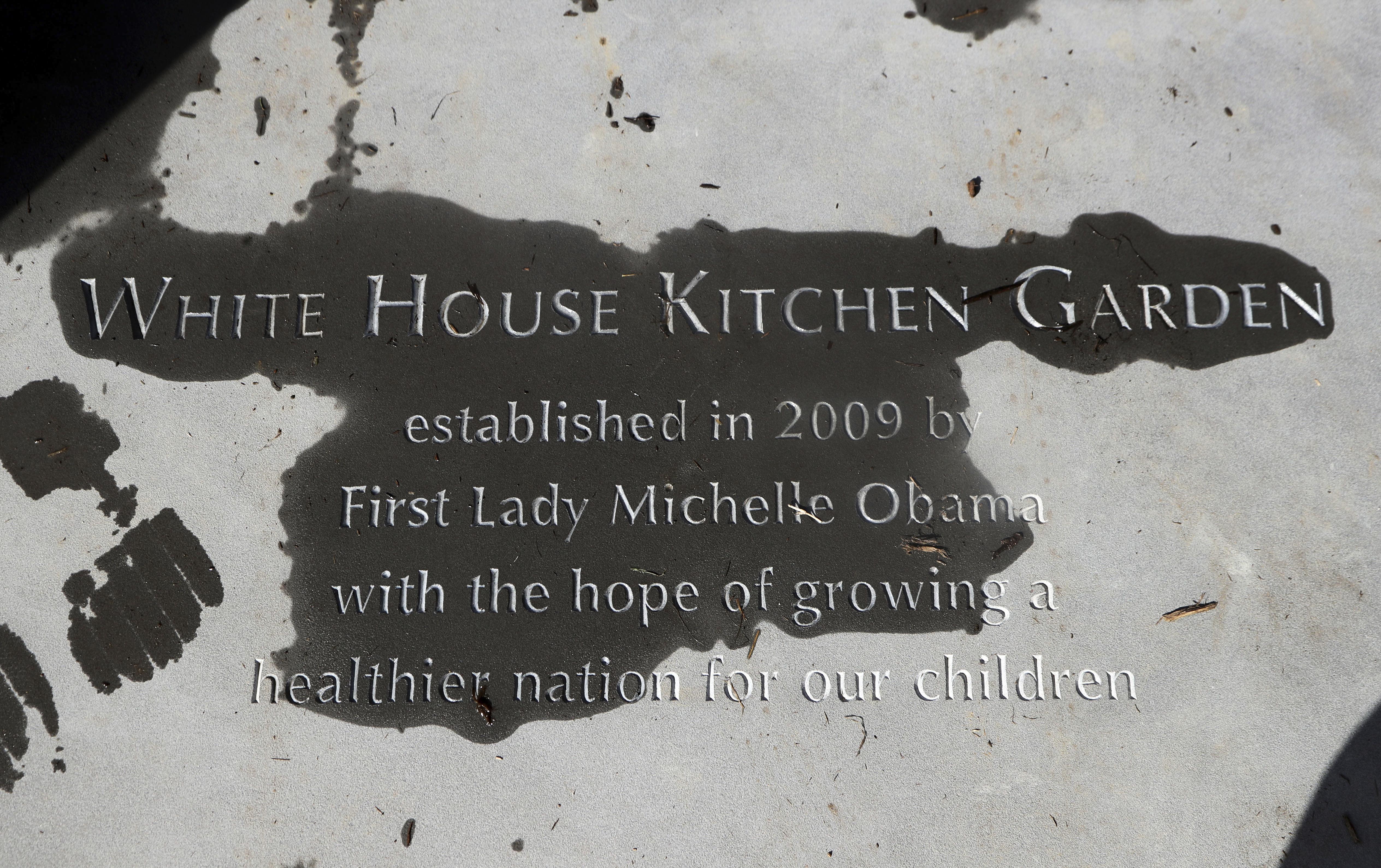 White House Kitchen Garden Washington First Lady Going All Out To Preserve White House Garden