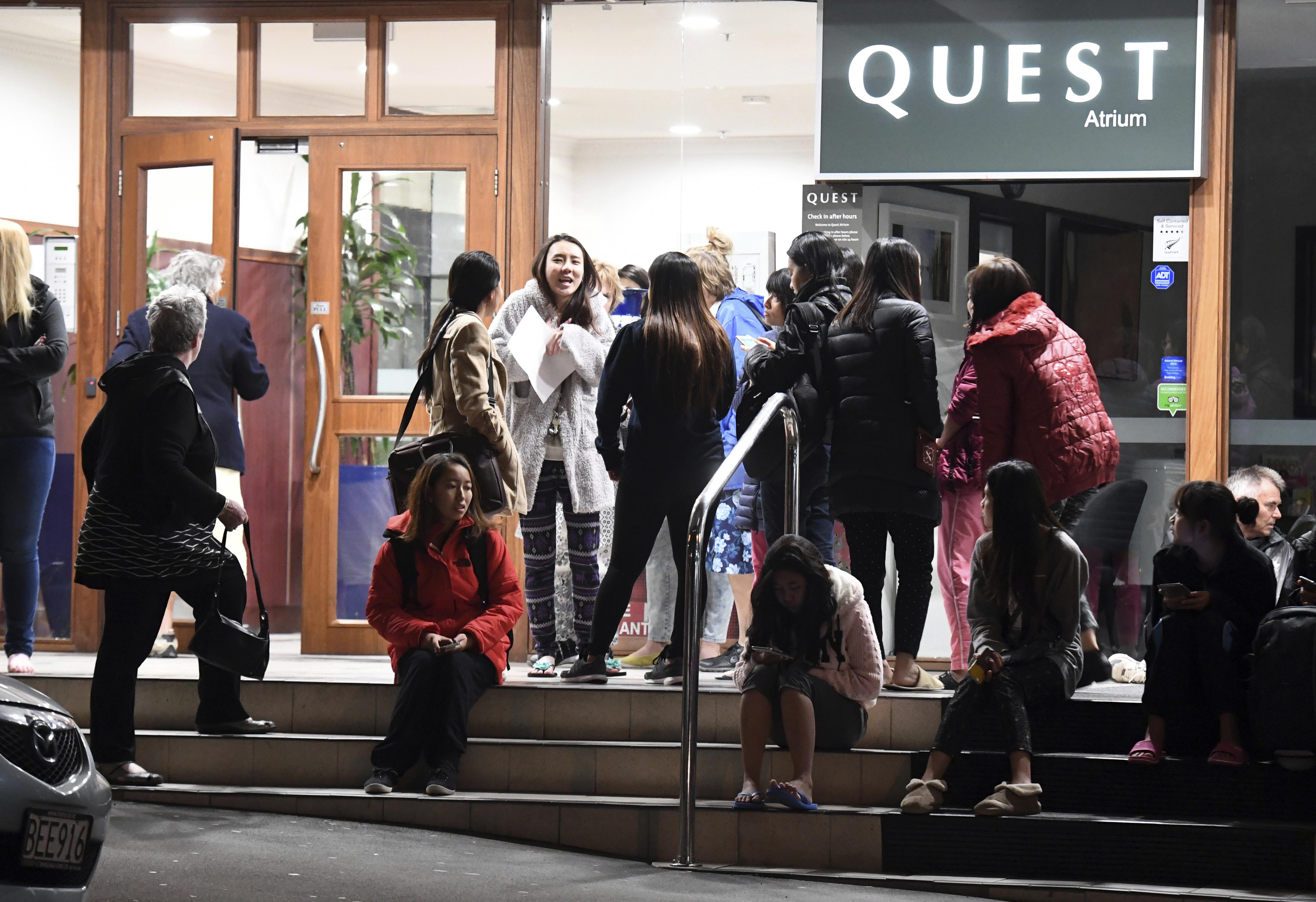 Wellington new zealand powerful quake strikes new for 291 the terrace wellington new zealand