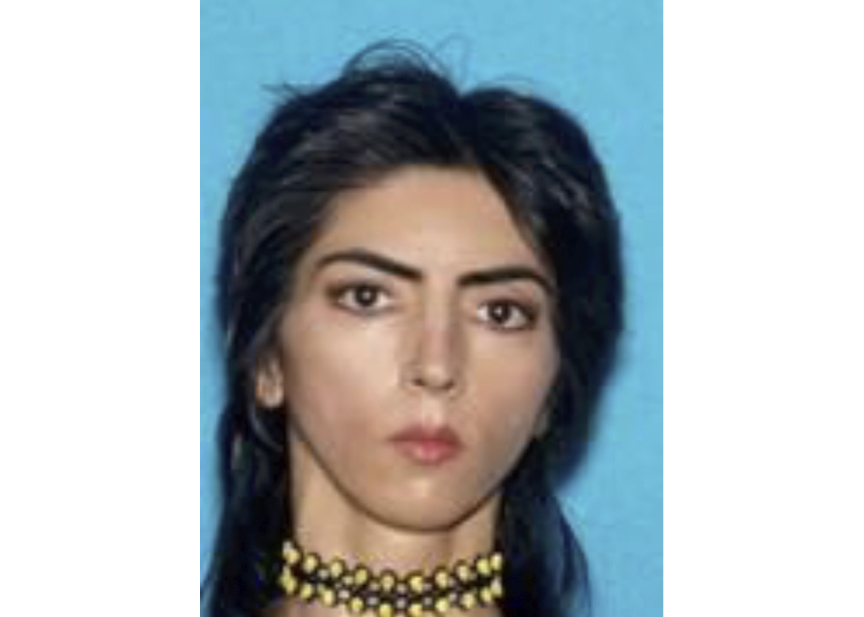 San Bruno, CA - YouTube Attacker Was Vegan Activist Who Accused