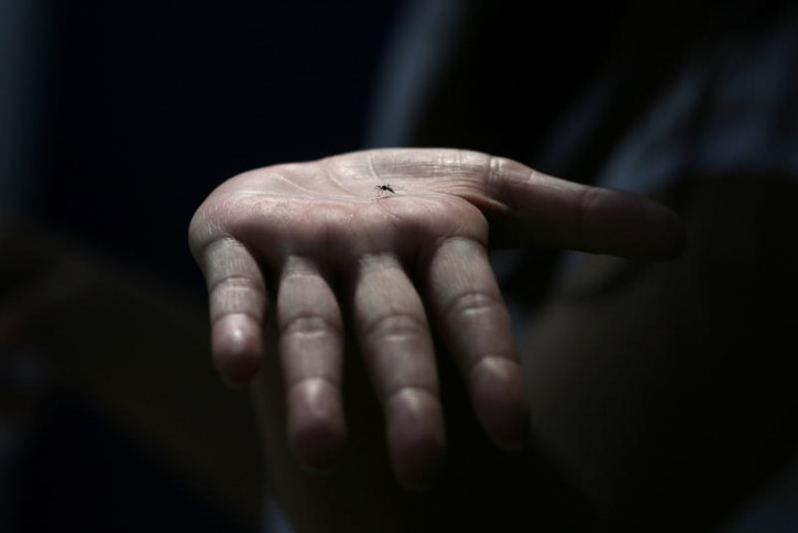 Washington – CDC: Tick, Mosquito-borne Infections Surge In United States