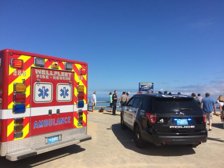 Wellfleet, MA – Man Dies After Shark Attack In Cape Cod