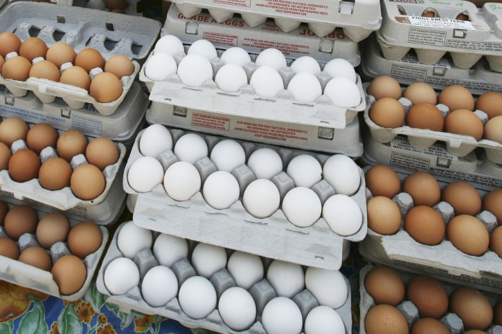 New York – Are Eggs Good Or Bad For You? New Research Rekindles Debate