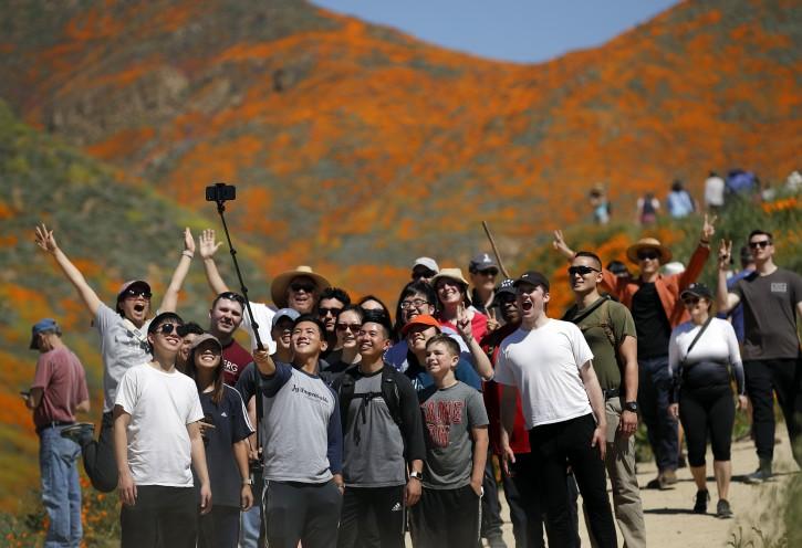 Lake Elsinore, CA – Tens Of Thousands Converge On California 'poppy Apocalypse'