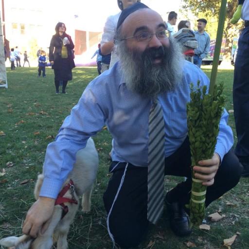 Rabbi Dan Rodkin